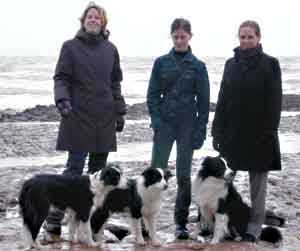 Dog Grooming Jobs Hampshire