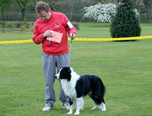 DOG SHOWS AND DOG SHOWING, CONFORMATION SHOWING AT EXEMPTION
